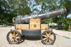 古老大炮中国人公园 库存照片
