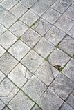 古老大理石地板 库存图片