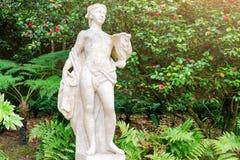 古老大理石妇女雕象在公园 少妇被雕刻的图在开花的庭院背景 免版税库存照片