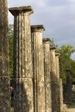 古老奥林匹亚palaistra保持 免版税库存照片