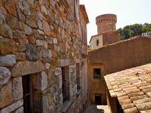古老屋顶在托斯卡del Mare 库存图片
