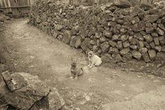 古老村庄 免版税图库摄影