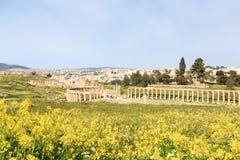 古老杰拉什,希腊罗马市的废墟Gerasa在现代约旦 免版税库存照片