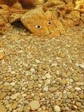 古老格式例证绘画象形文字岩石主题向量 库存图片