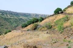 古老犹太市的废墟罗马帝国的军队戈兰高地的Gamla毁坏的  免版税库存图片