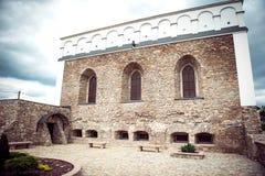 古老犹太教堂在乌克兰 库存照片
