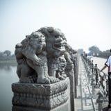古老狮子雕象石头 库存照片