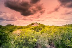 古老玛雅人市的参观卡拉克穆尔-南尤加坦- Mex 库存图片
