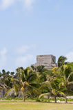 古老玛雅墨西哥破坏tulum 免版税库存图片