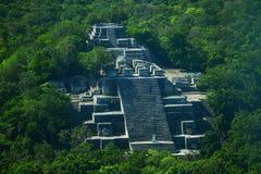 古老玛雅市的废墟卡拉克穆尔 库存照片