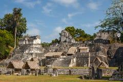 古老玛雅市的废墟蒂卡尔 免版税库存照片