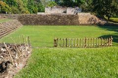 古老玛雅市的废墟Quirigua 免版税库存图片