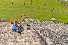 古老玛雅废墟在帕伦克,恰帕斯州,墨西哥 库存照片