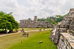 古老玛雅废墟在帕伦克,恰帕斯州,墨西哥 库存图片