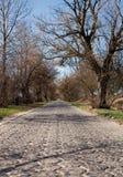 古老的路石头 免版税库存图片