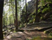 古老石头和小山看法在绿色森林里 图库摄影