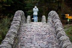 古老石桥梁 库存图片