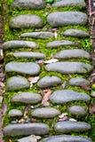 古老石道路在森林 库存照片