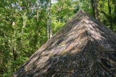 古老石金字塔在森林里 免版税库存照片
