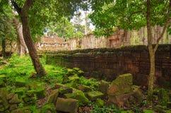 古老石头和墙壁、时间密林的破坏和本质 古老高棉建筑学在密林 免版税库存照片