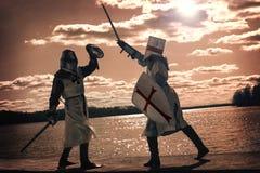 古老神秘的骑士 免版税库存照片