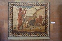 古老科林斯湾,马赛克在博物馆 免版税库存照片