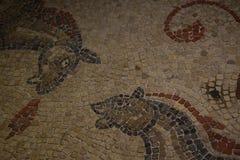 古老罗马两匹马mosiac在巴恩,英国 图库摄影