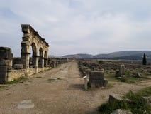 古老罗马城市Volubilis,摩洛哥 免版税库存图片