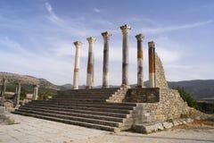 古老罗马市的废墟Volubilis,摩洛哥 免版税库存图片