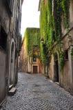 古老罗马绿色街道  免版税库存图片