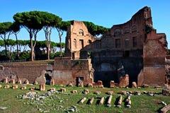 古老罗马遗骸  库存图片