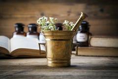 古老自然医学、草本和医学 免版税库存图片