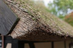 古老芦苇屋顶 库存图片
