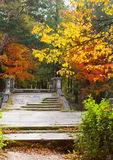 古老被毁坏的桥梁在前宫殿公园。Gatchina。彼得斯堡。 库存照片