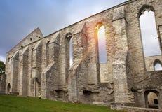 古老被破坏的圣Brigitta女修道院1436年在Pirita地区,塔林,爱沙尼亚 库存图片