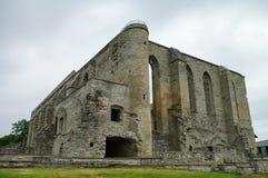 古老被破坏的圣Brigitta女修道院在Pirita地区,塔林, E 库存图片