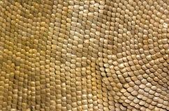 古老装甲黄铜骑兵罗马缩放比例 免版税图库摄影