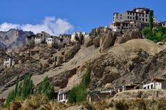 古老西藏佛教徒修道院Lamayuru Gonpa :巨大的高锣大厦在绿色树中的山土坎,拉达克站立,亦不 免版税图库摄影