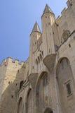 古老阿维尼翁大教堂和Palais des Papes 库存图片