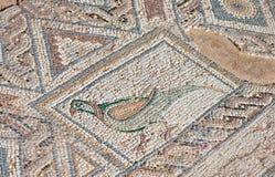 古老马赛克在Kourion,塞浦路斯 免版税库存照片