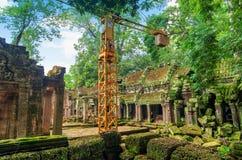古老高棉建筑学的重建在密林 库存照片