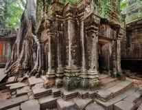 古老高棉建筑学 在吴哥,暹粒,柬埔寨的Ta Prohm寺庙 免版税库存图片