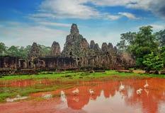 古老高棉建筑学 有巨型榕树的Ta Prohm寺庙在日落 吴哥窟复合体,暹粒,柬埔寨旅行desti 免版税库存图片