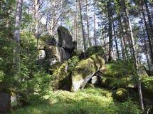 古老,大石头的看法在森林里 免版税图库摄影