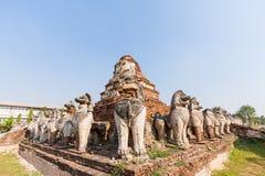 在Ayutthaya历史公园,泰国破坏狮子雕象 免版税图库摄影