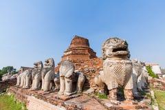 在Ayutthaya历史公园,泰国破坏狮子雕象 免版税库存图片