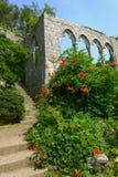 古老archs和台阶有开花的灌木的 库存照片