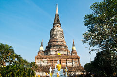 古老ayutthaya寺庙 库存照片