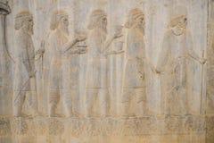 古老Bactrians浅浮雕在Apadana的,波斯波利斯 设拉子,伊朗 免版税库存图片
