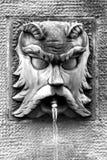 古老castellane喷泉法国 免版税库存图片